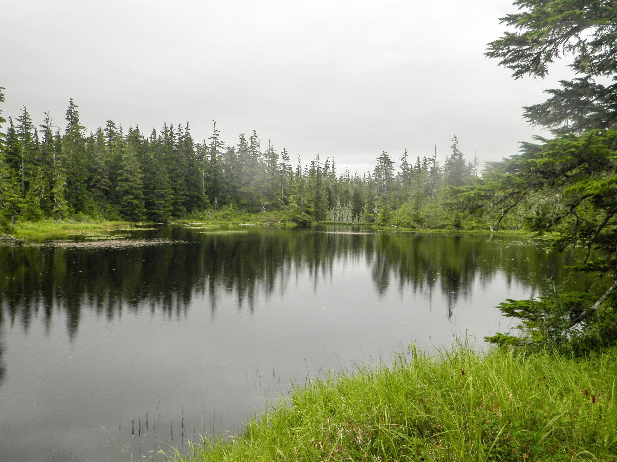 Gunnuk Creek N. - Kake, Alaska